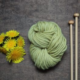 Sample of Natural Dyed Yarn