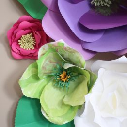 Collection of Paper Flowers