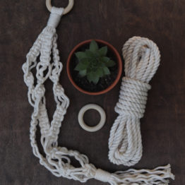 mini macrame plant hanger kit